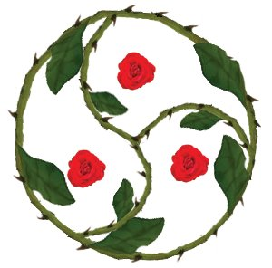 Rose di DogaYonv